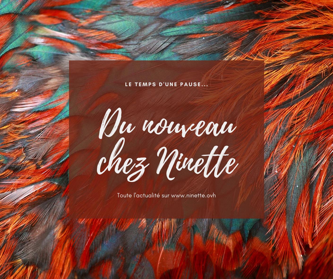 Un nouveau site pour Ninette !